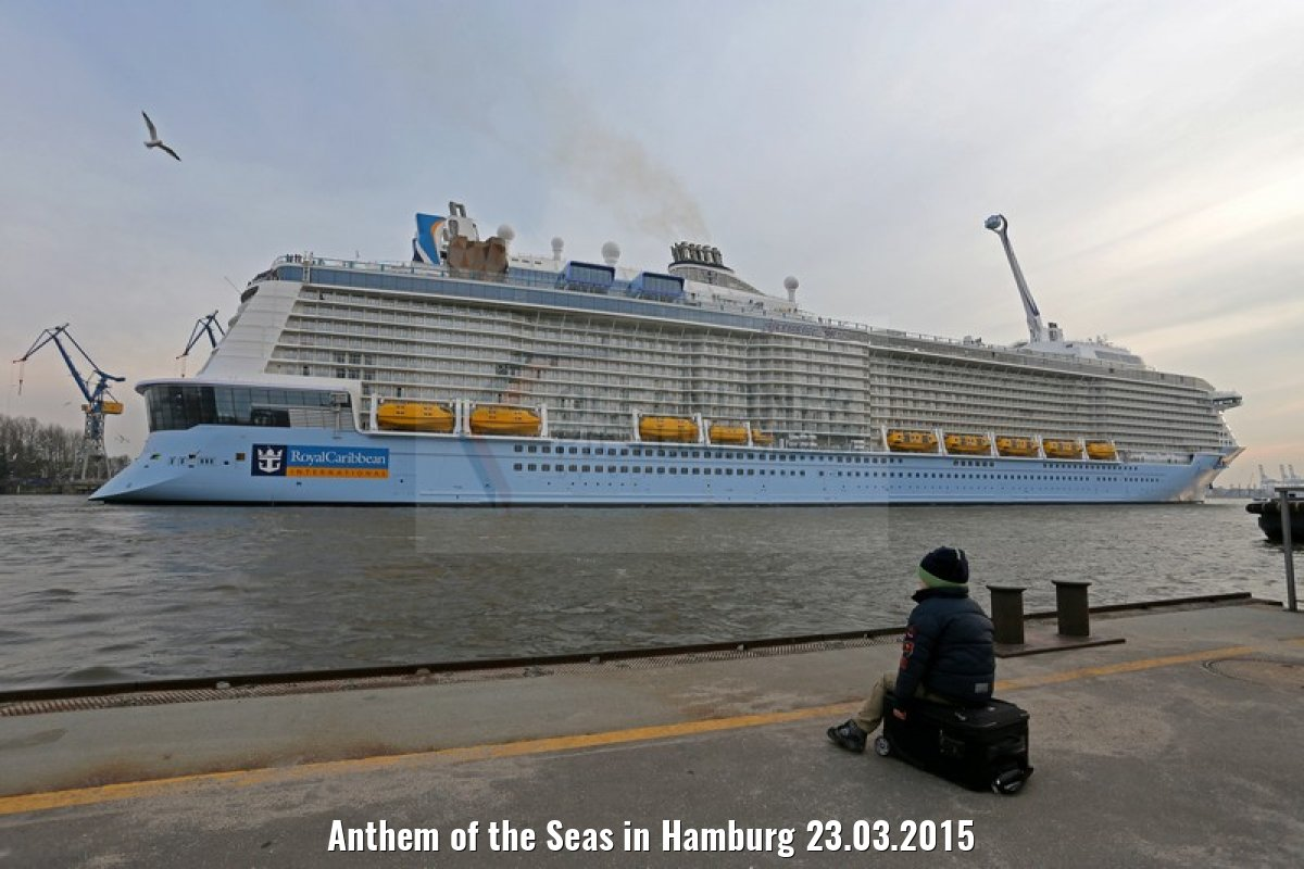 Anthem of the Seas in Hamburg 23.03.2015