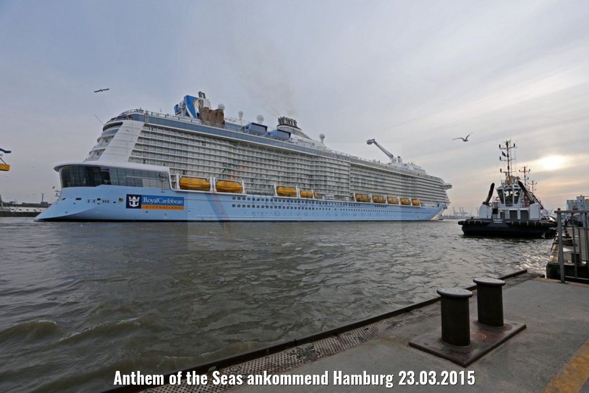 Anthem of the Seas ankommend Hamburg 23.03.2015