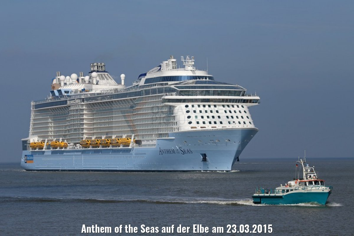 Anthem of the Seas auf der Elbe am 23.03.2015