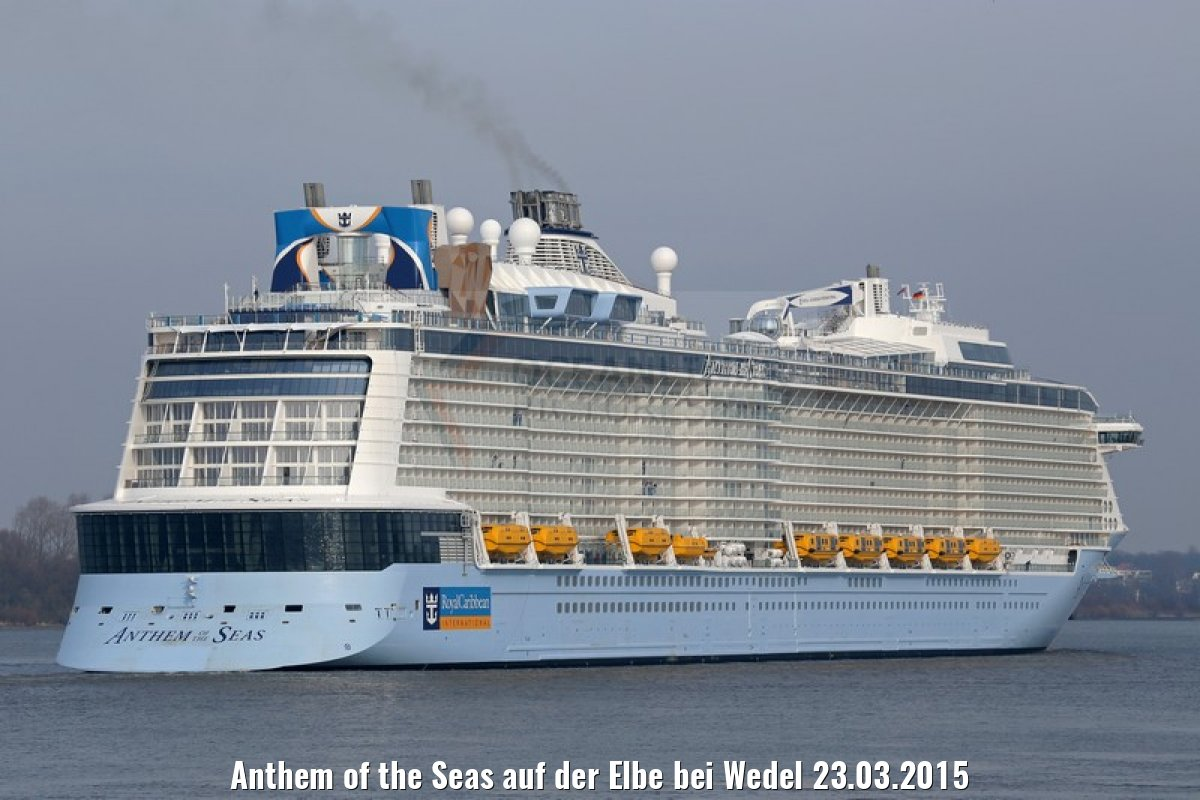 Anthem of the Seas auf der Elbe bei Wedel 23.03.2015
