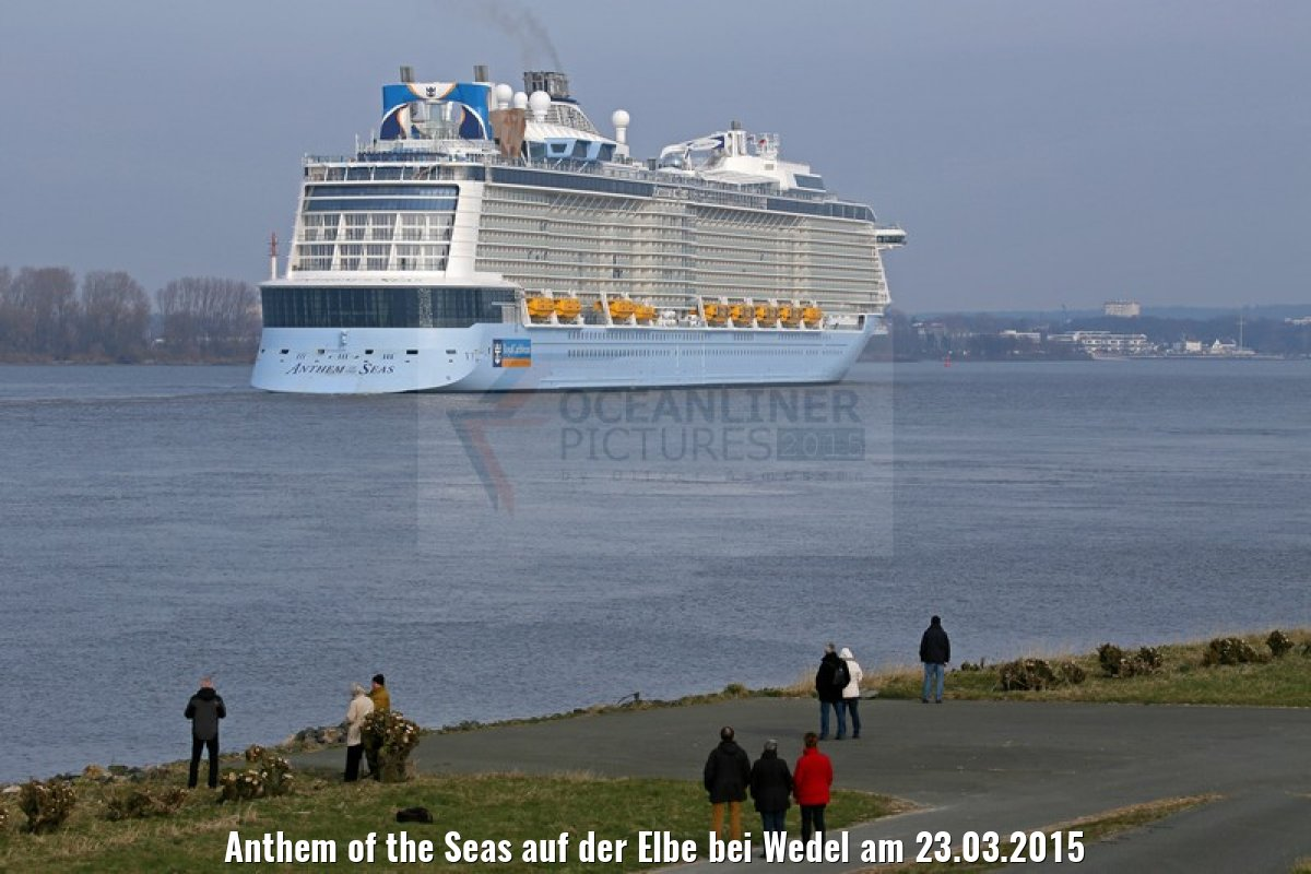 Anthem of the Seas auf der Elbe bei Wedel am 23.03.2015