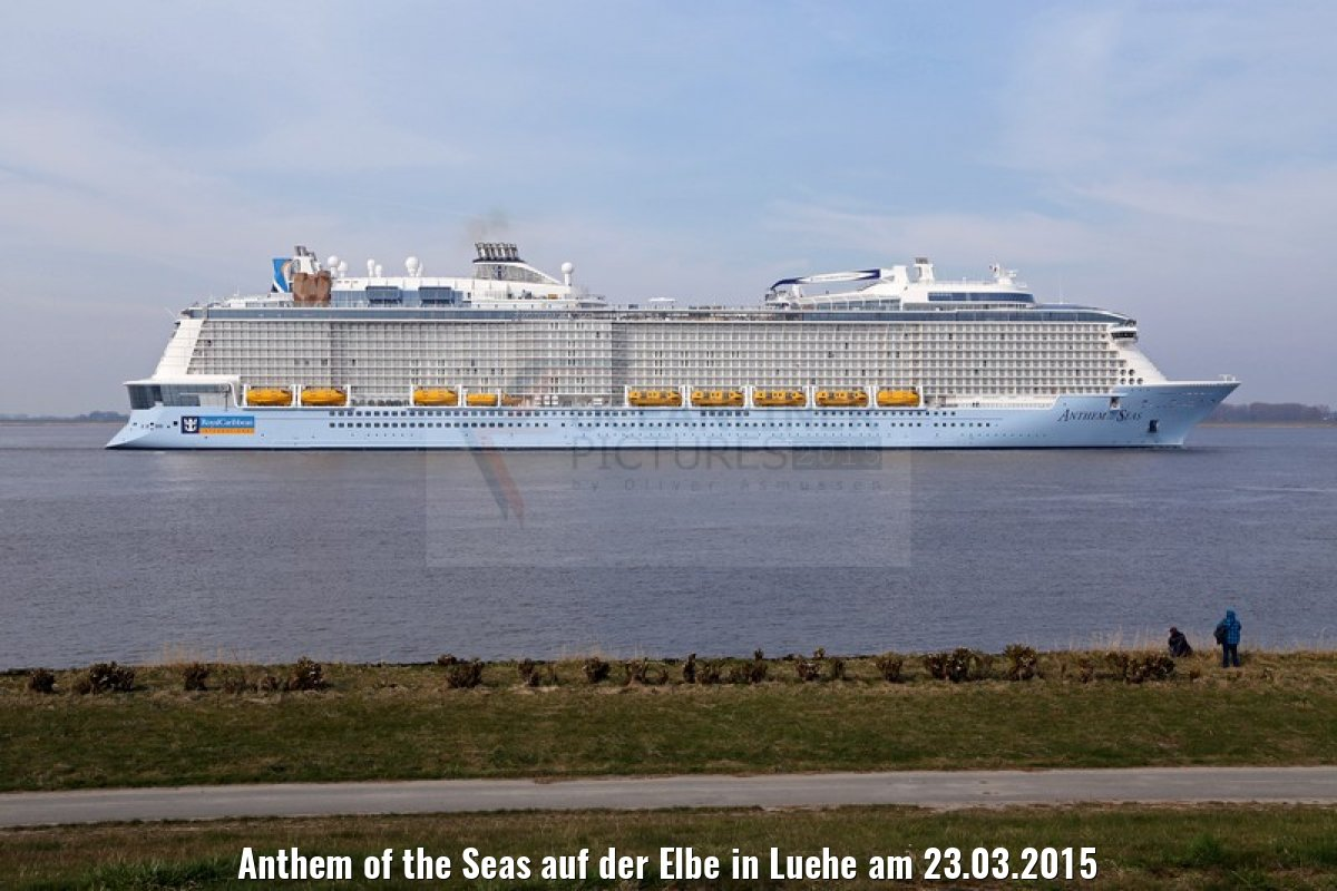 Anthem of the Seas auf der Elbe in Luehe am 23.03.2015