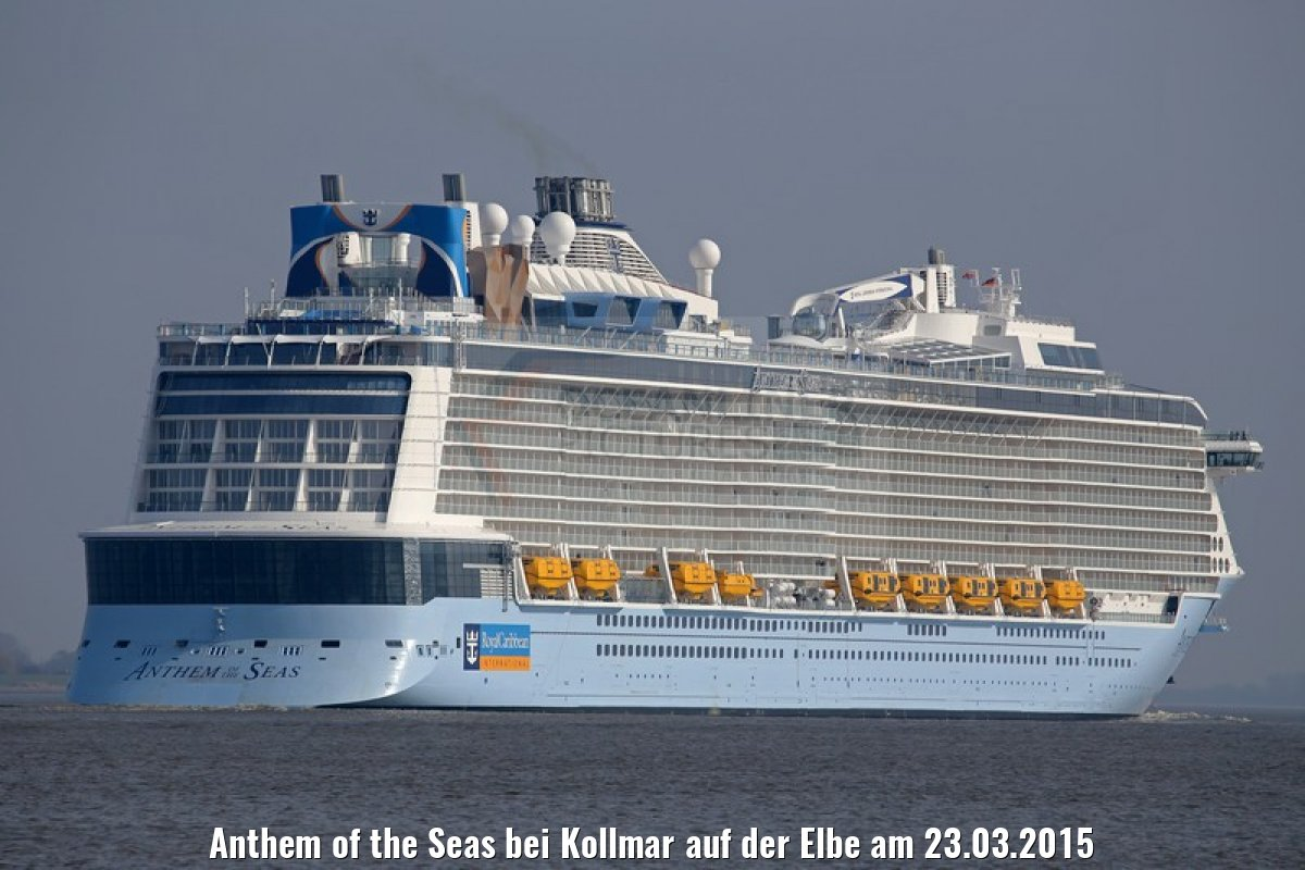 Anthem of the Seas bei Kollmar auf der Elbe am 23.03.2015