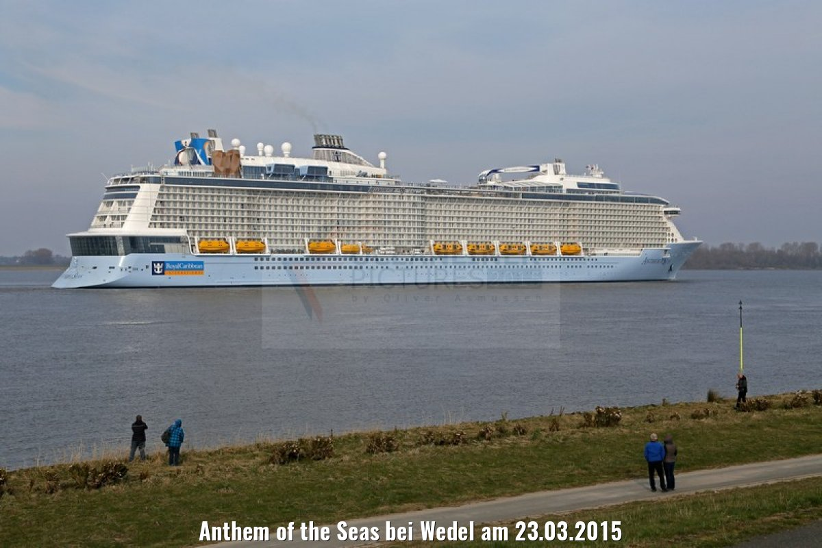 Anthem of the Seas bei Wedel am 23.03.2015