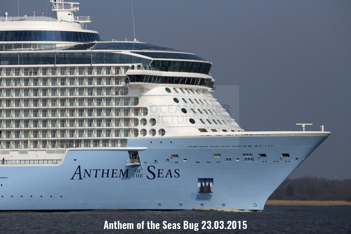 Anthem of the Seas Bug 23.03.2015