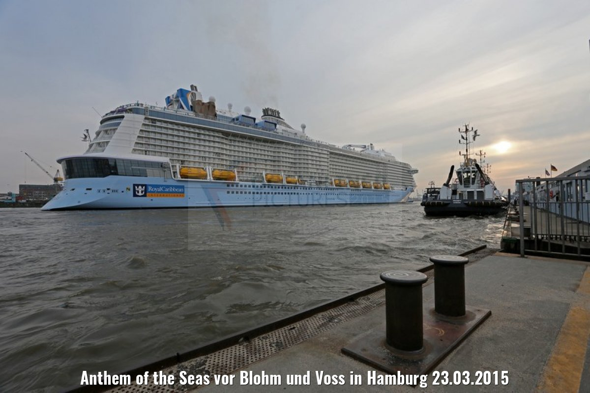 Anthem of the Seas vor Blohm und Voss in Hamburg 23.03.2015