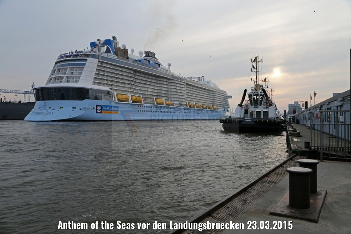 Anthem of the Seas vor den Landungsbruecken 23.03.2015