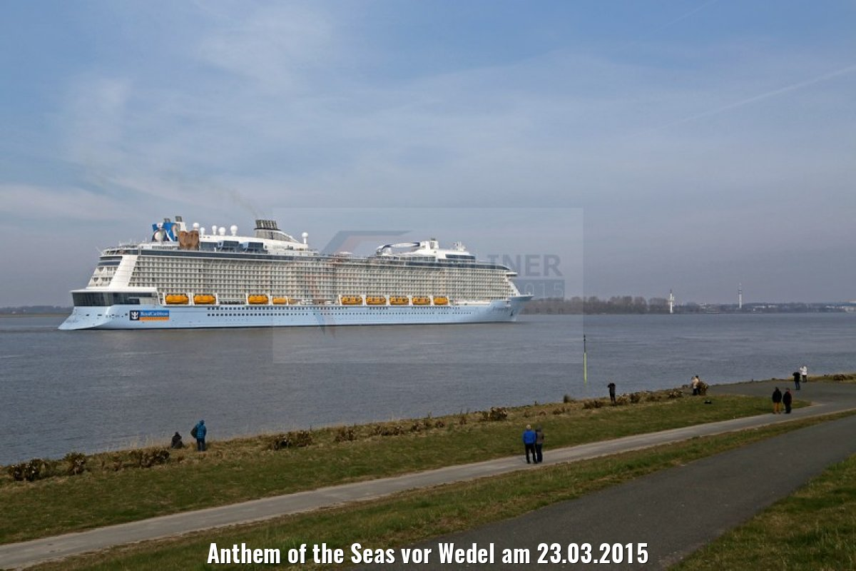 Anthem of the Seas vor Wedel am 23.03.2015