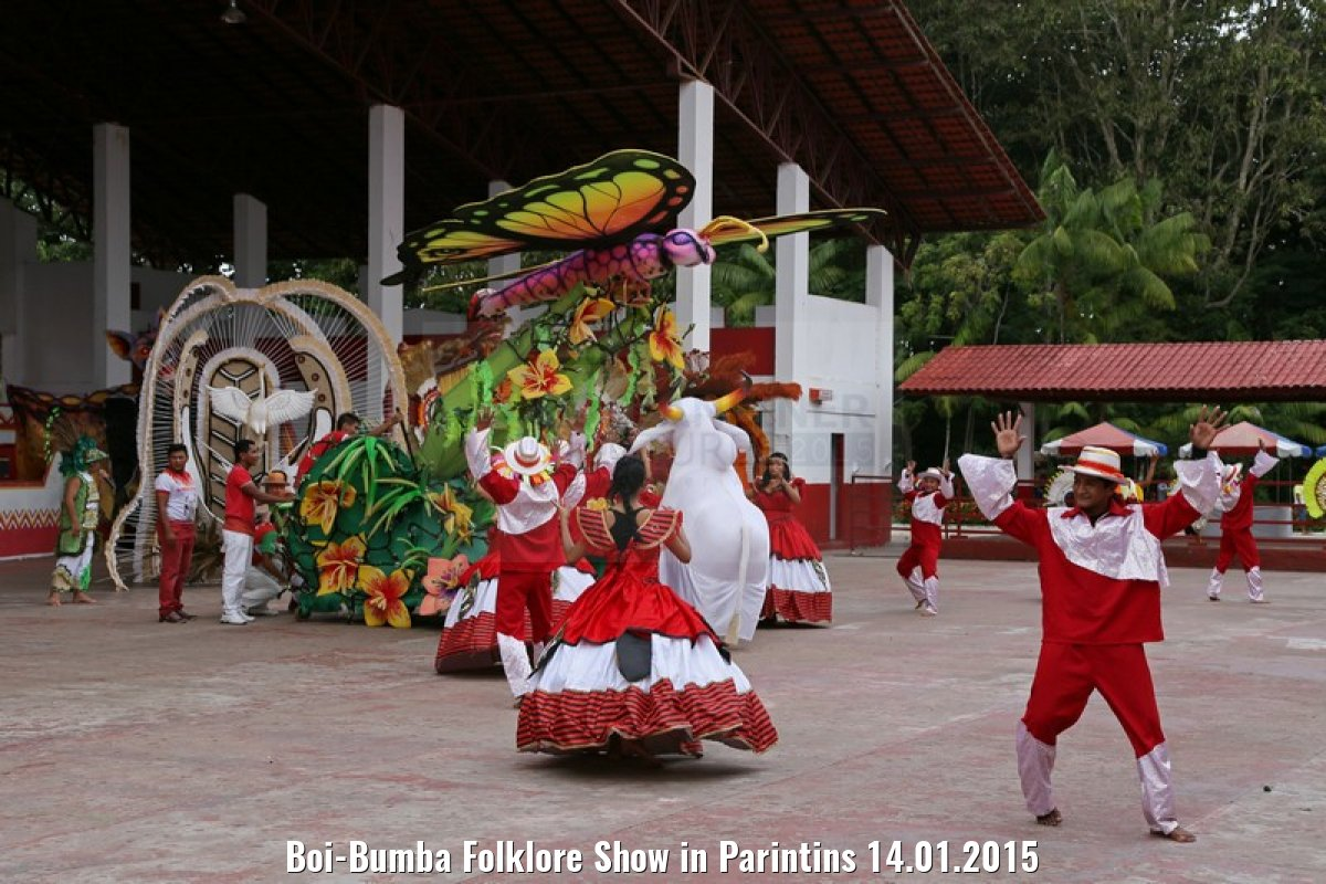 Boi-Bumba Folklore Show in Parintins 14.01.2015