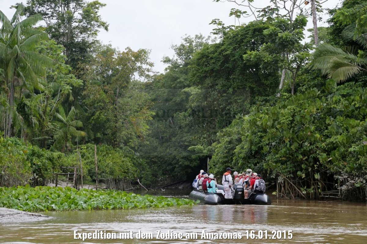 Expedition mit dem Zodiac am Amazonas 16.01.2015