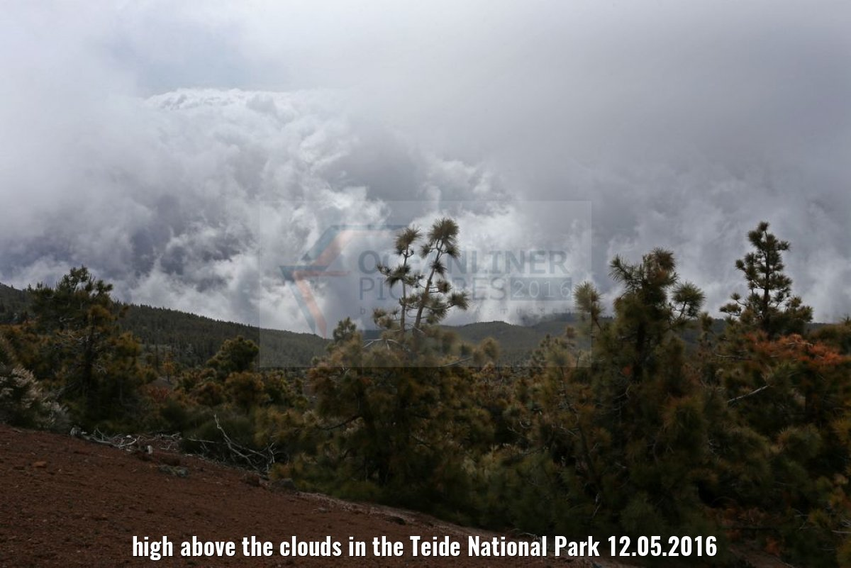 high above the clouds in the Teide National Park 12.05.2016