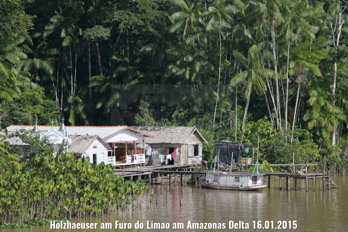 Holzhaeuser am Furo do Limao am Amazonas Delta 16.01.2015