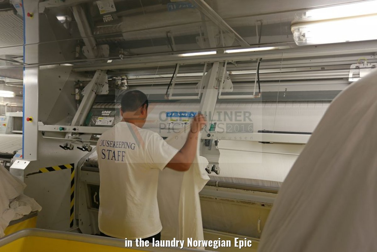 in the laundry Norwegian Epic