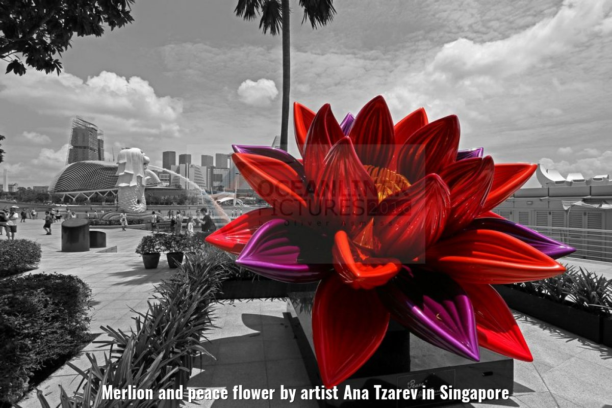 Merlion and peace flower by artist Ana Tzarev in Singapore
