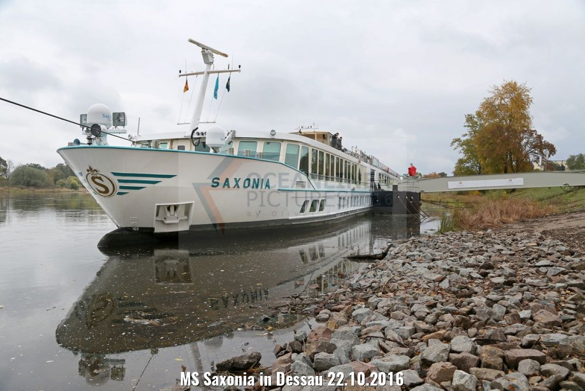 MS Saxonia in Dessau 22.10.2016