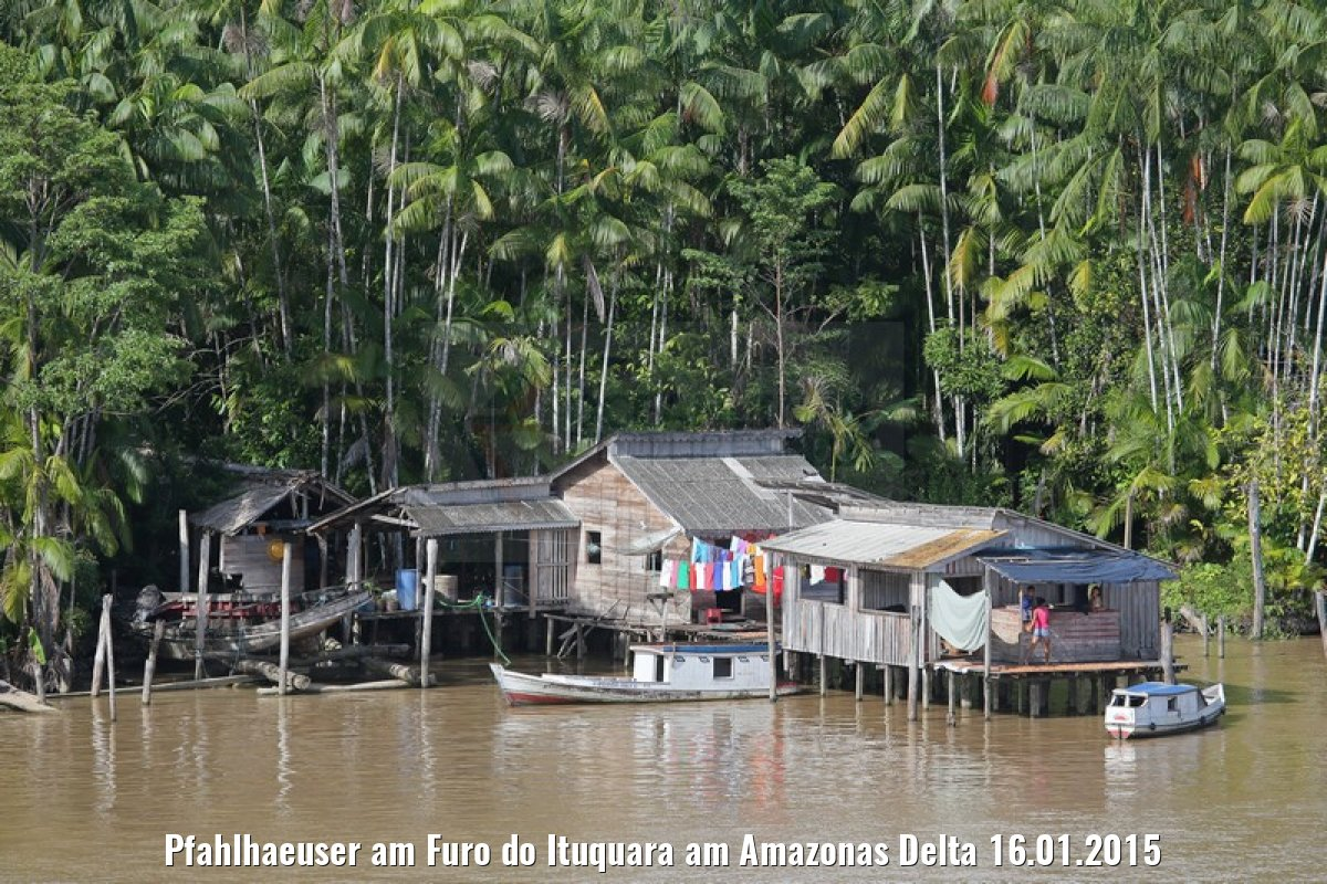 Pfahlhaeuser am Furo do Ituquara am Amazonas Delta 16.01.2015