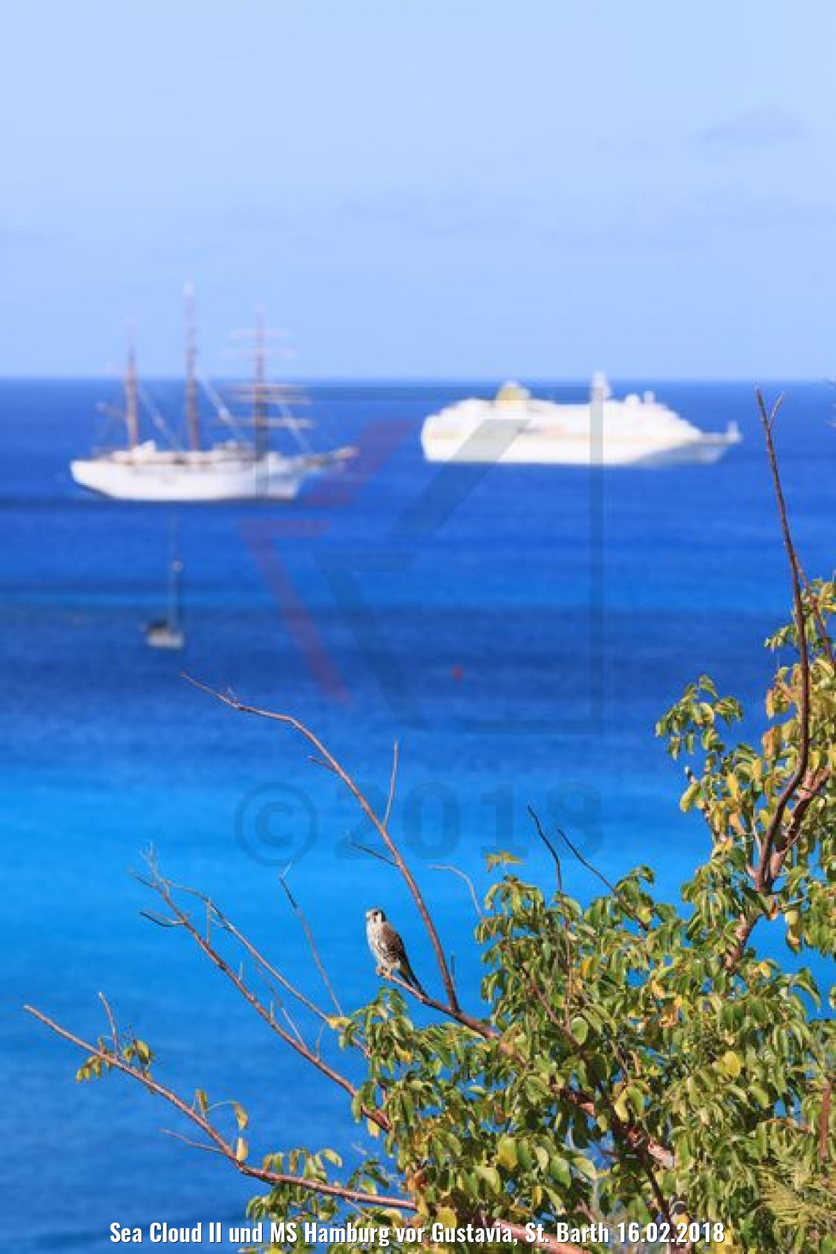 Sea Cloud II und MS Hamburg vor Gustavia, St. Barth 16.02.2018