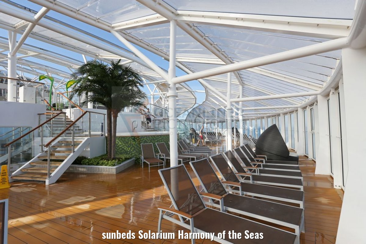 sunbeds Solarium Harmony of the Seas