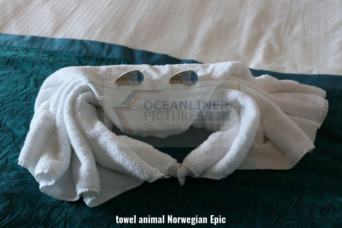towel animal Norwegian Epic