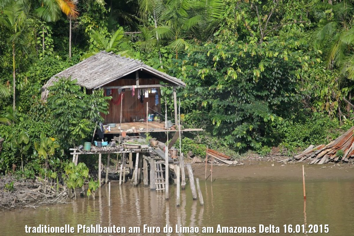 traditionelle Pfahlbauten am Furo do Limao am Amazonas Delta 16.01.2015