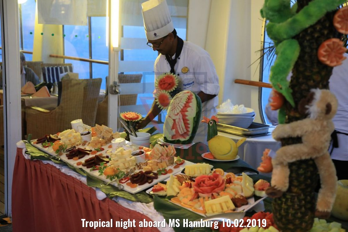 Tropical night aboard MS Hamburg 10.02.2019