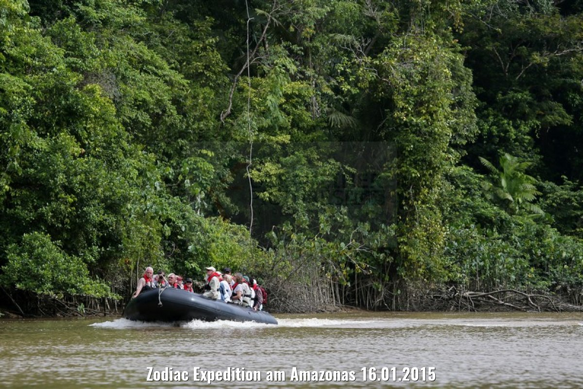 Zodiac Expedition am Amazonas 16.01.2015
